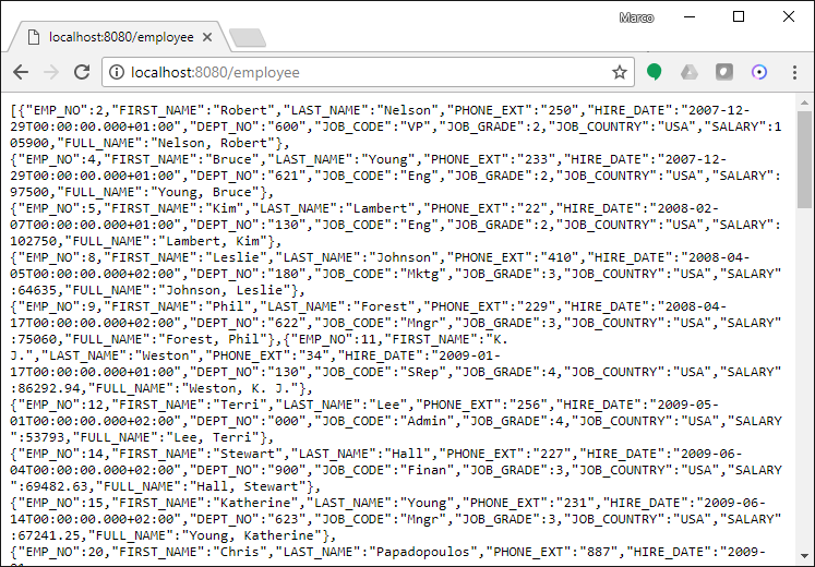 DataSet Mapping to JSON for JavaScript client support in RAD